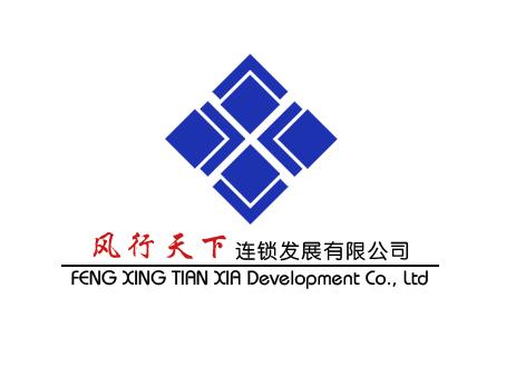 风行天下公司logo设计