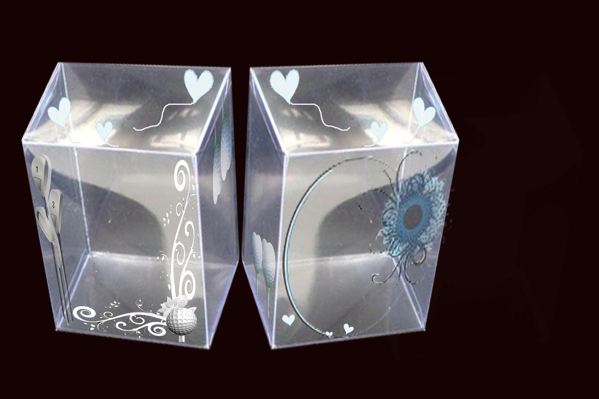 PVC透明盒包装设计 17号