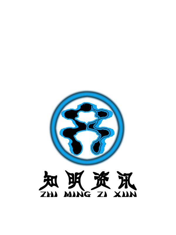 武汉知明资讯科技有限公司logo设计