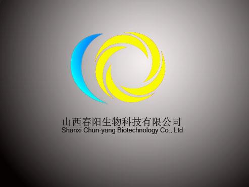 logo/名称/包装设计